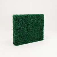 Rental store for BOXWOOD HEDGE WALL 4 W X 42  H in Orange County CA